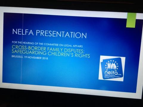 NELFA presentation Brussels – November 2018